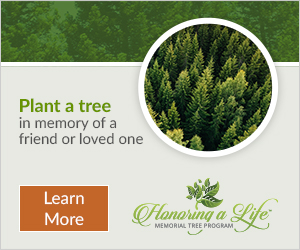 Plant a tree for a friend